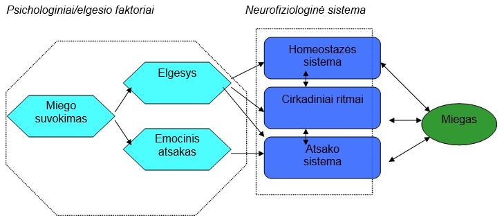 elgesio hipertenzijai taisyklės)